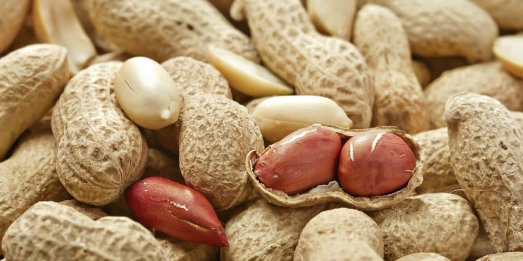 Лечение и профилактика аллергии на арахис