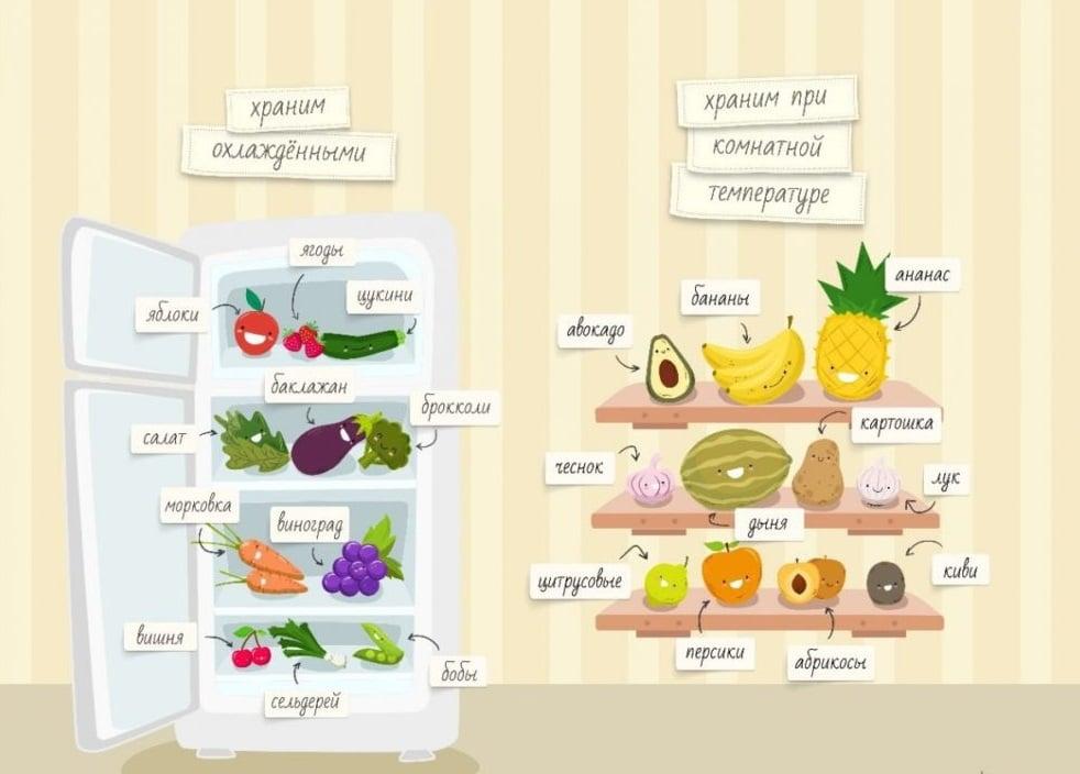 Правила хранения фруктов и овощей - схема