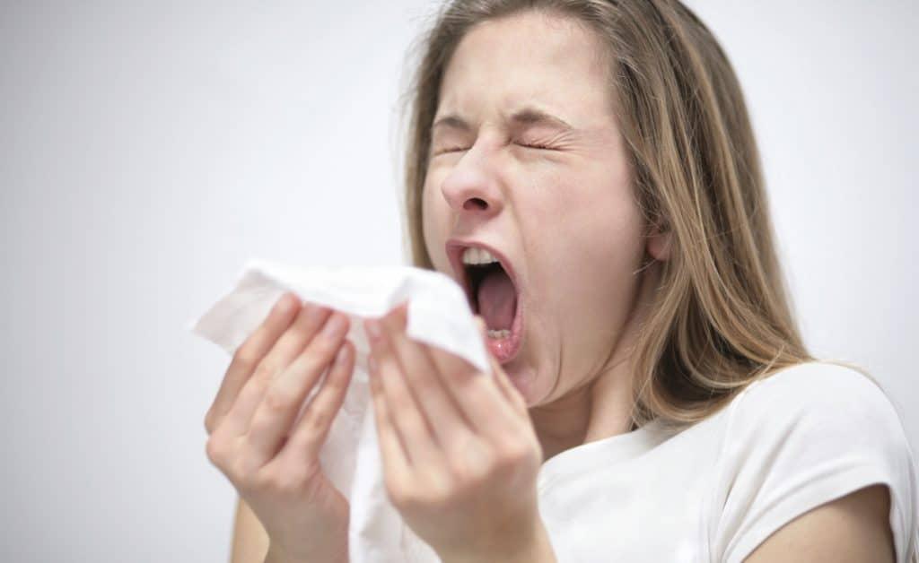 Симптомы аллергии на сфинкса