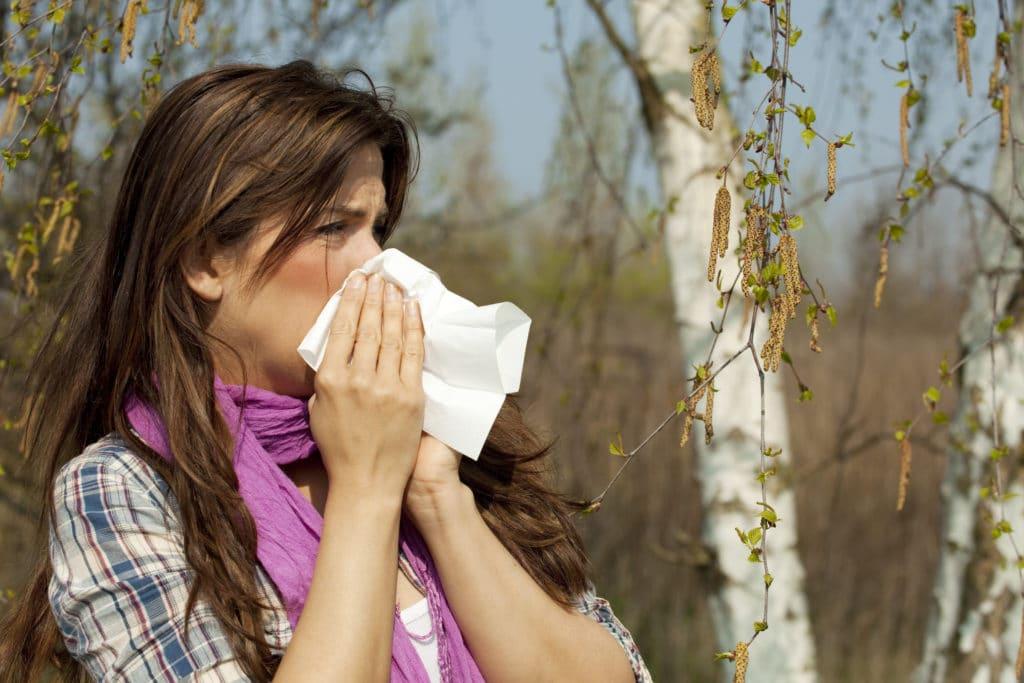 Заложенность носа и насморк одни из симптомов аллергической реакции на березу