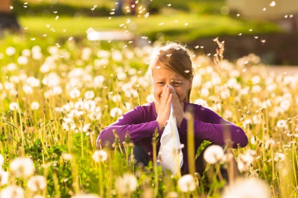 Сенная лихорадка или аллергический ринит