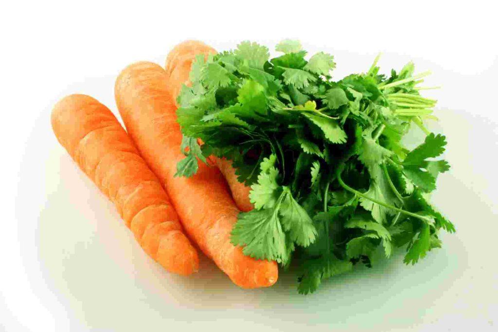 Петрушка, морковь, щавель, инжир, пастернак, сельдерей, сладкий перец, цитрусовые, клубнику, помидоры и смородина, способны усиливать реакцию на солнце