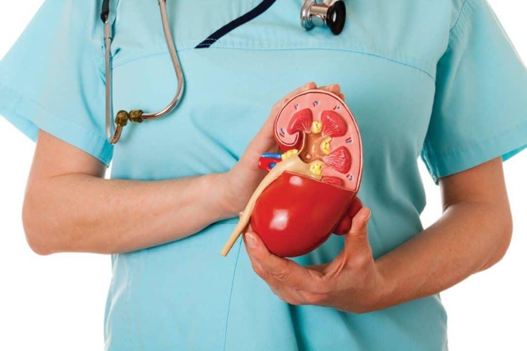 Агенезия почки - диагностика и дополнительные меры профилактики осложнений