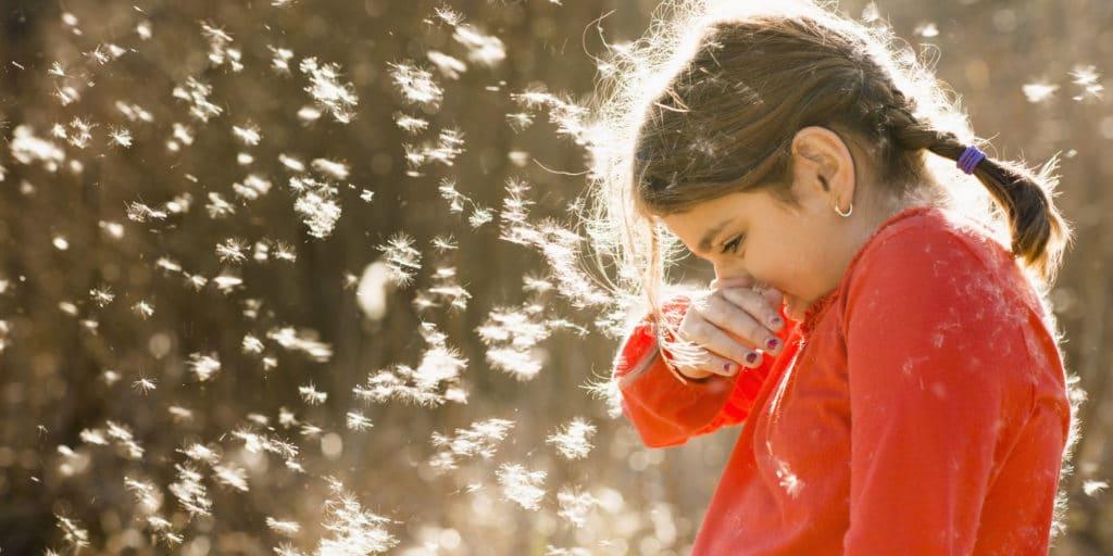 Симптомы при аллергии на цветение