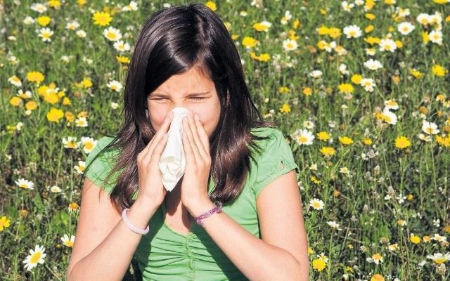Предрасположенность к аллергическим заболеванием