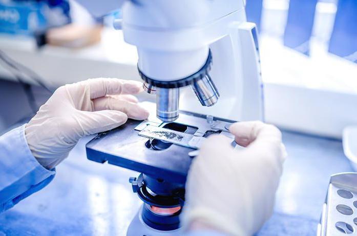 Исследование материала биопсии при язвенной болезни желудка
