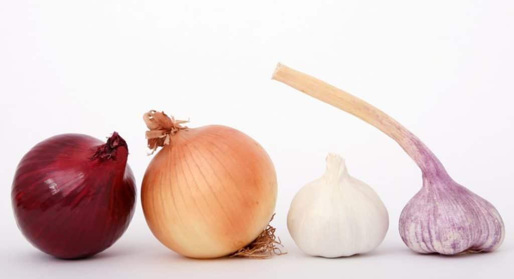 От насморка может помочь измельченный чеснок или лук