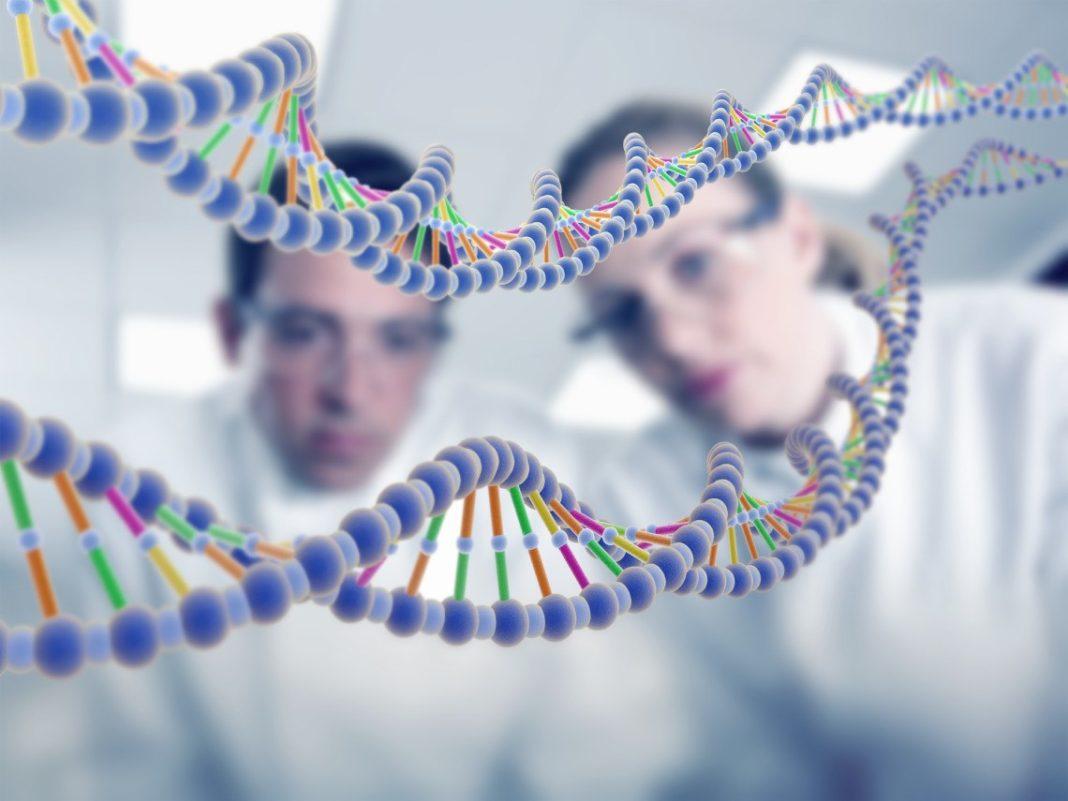 Учёные подобрались к разгадке смысла жизни