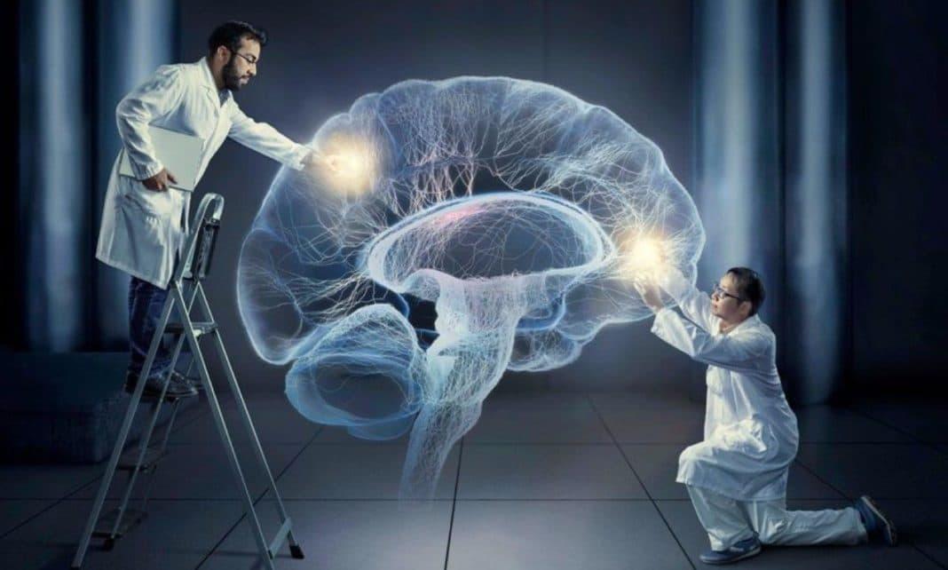 Интересное свойство мозга — чем меньше проблем, тем больше он их замечает