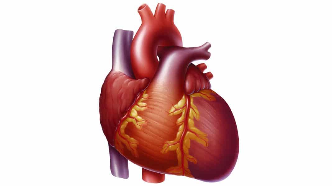 Давит в области сердца