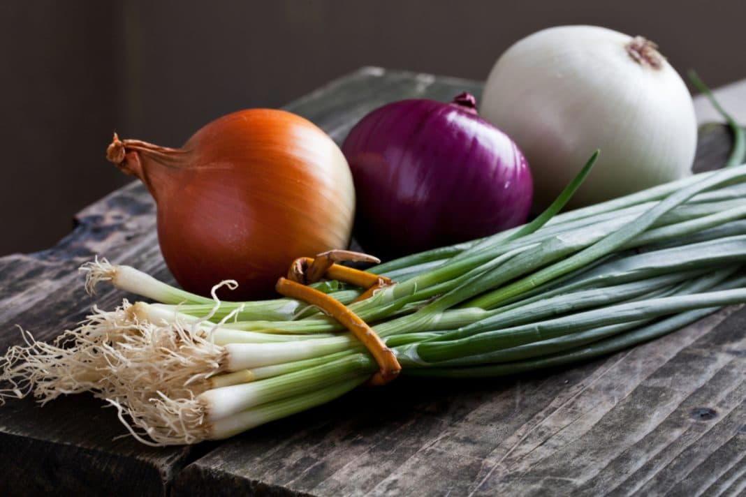 Репчатый лук или зеленый: что принесет больше пользы?
