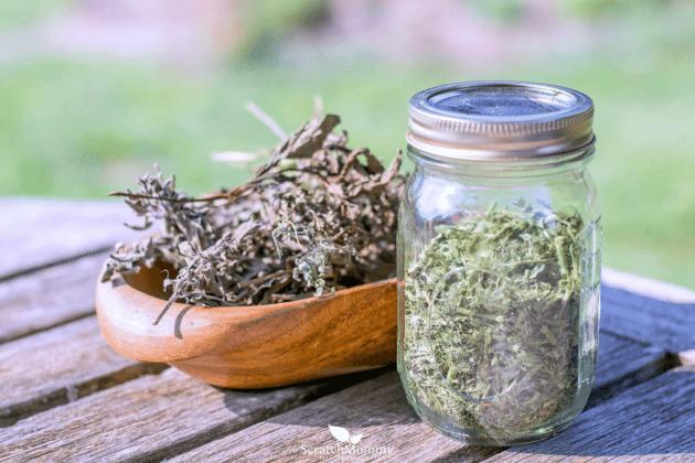 Травы понижающие давление как лечить гипертонию травами